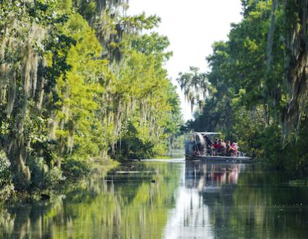 air boat tour in Louisiana bayou